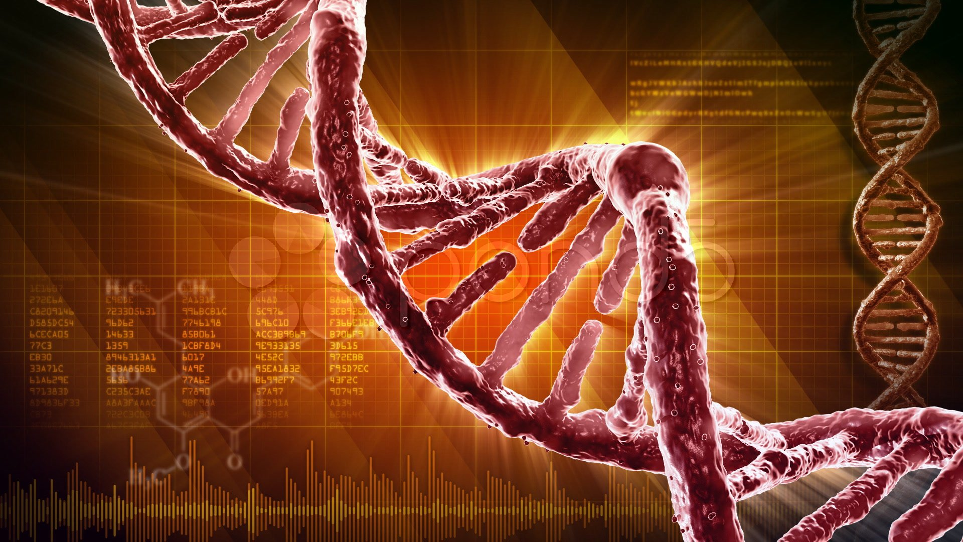 dna the strands of life discovered in 1868