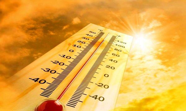 Синоптики: На Москву надвигается аномальная жара