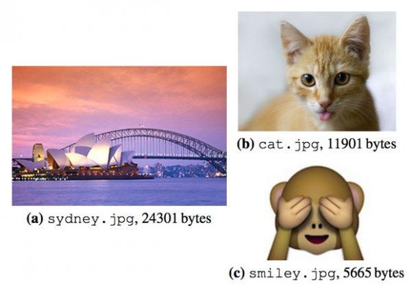 Ученым удалось сохранить в ДНК 151 килобайт картинок