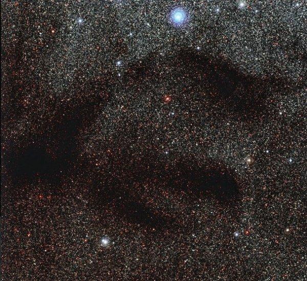 """Астрономы показали """"мертвую"""" туманность LDN 1768"""