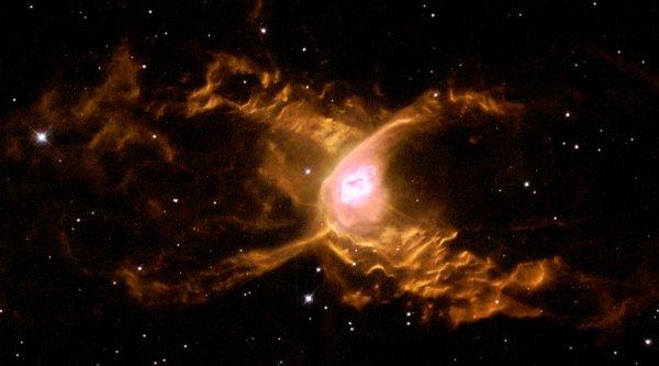 Специалисты NASA: Туманность «Паука» скрывает молодые звезды