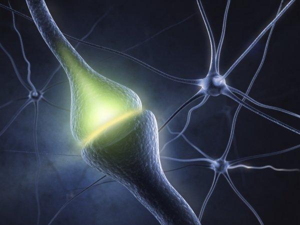 Ученые из МФТИ создали прототип электронных синапсов