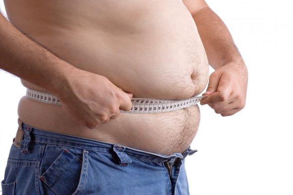 Южнокорейские ученые нашли ключ к лекарству от ожирения