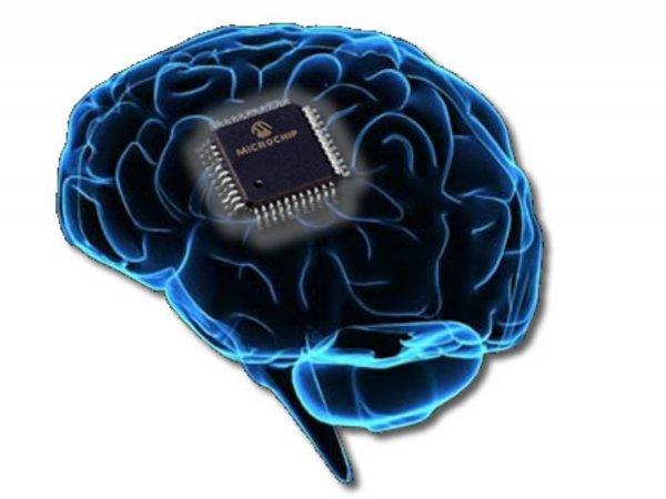 Ученые 15 стран объединились для создания аналога человеческого разума