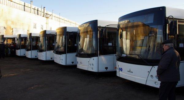 На Олимпиаде 2020 в Токио начнут курсировать «умные» автобусы
