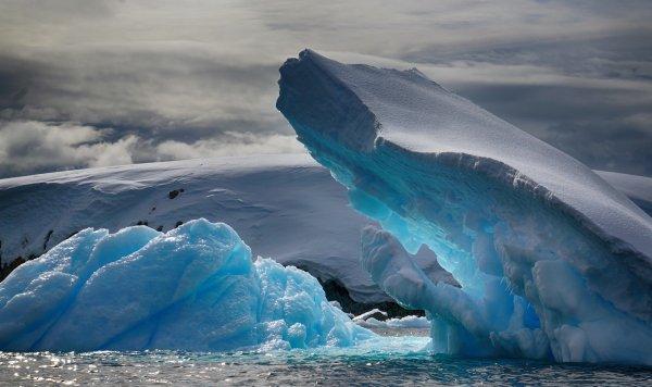 Ученые: Бактерии на Антарктику заносятся с других континентов