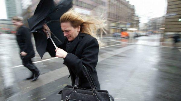 В МЧС предупредили москвичей о приближении сильного ветра