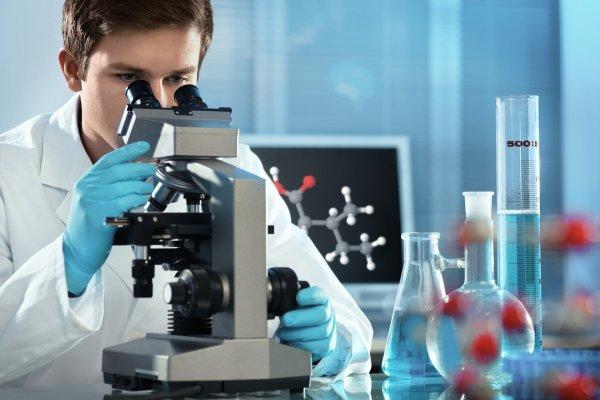 Ученые: Образ жизни оказывает сильное влияние на кишечные бактерии