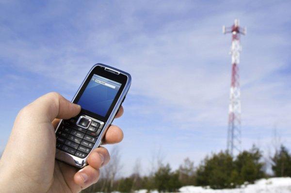 "С начала 2016 года ""МегаФон"" удвоил объем 4G-трафика в Приморском крае"