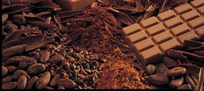 Ученые доказали пользу шоколада для профилактики сердечных болезней и диабета