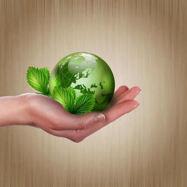 Ученые: Озеленение оказывает негативное влияние на Землю