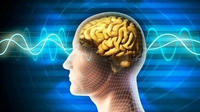 Ученые: Водителям помогает шестое чувство