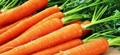 Ученые утверждают, что морковь способна победить рак