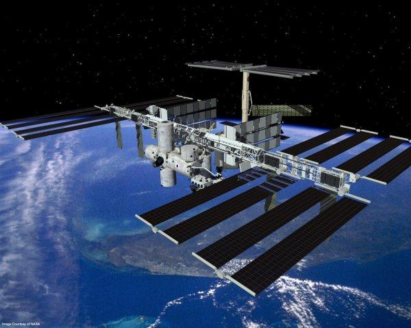 Экипаж МКС отведал «космические креветки» по рецепту школьников