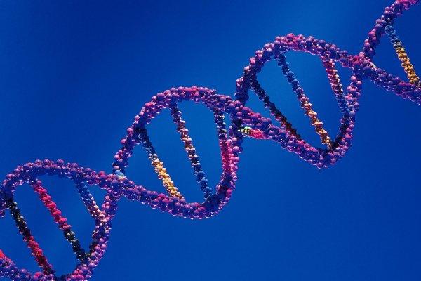 Ученые нашли генетическую мутацию, вызывающую рассеянный склероз