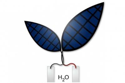 «Бионический лист» получает топливо из солнца, воздуха и воды