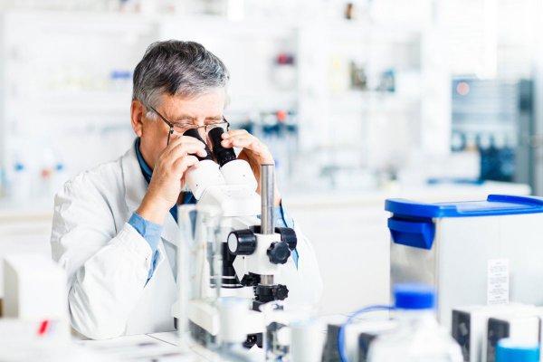 Ученые: Найден эффективный метод лечения рака поджелудочной