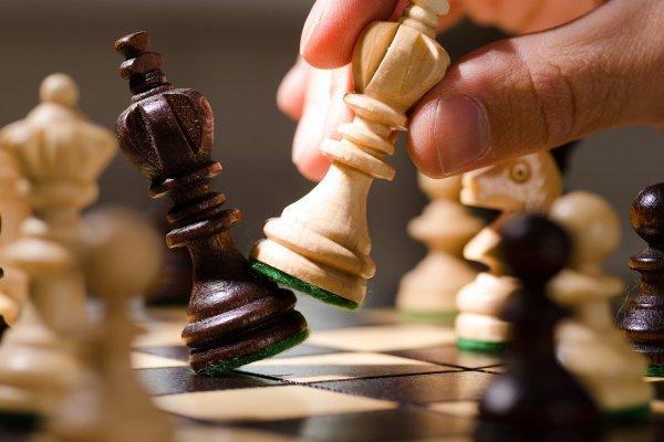 «Думающая машина 6» позволяет вычислять «мысли» ИИ во время игры в шахматы