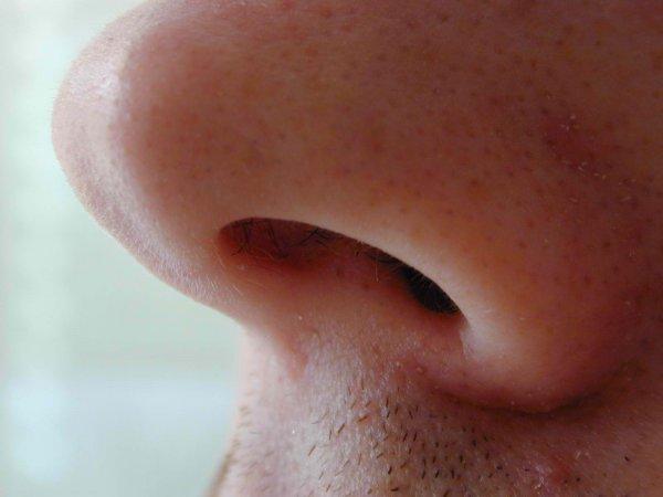 Ученые: Люди способны опознавать преступников по запаху пота