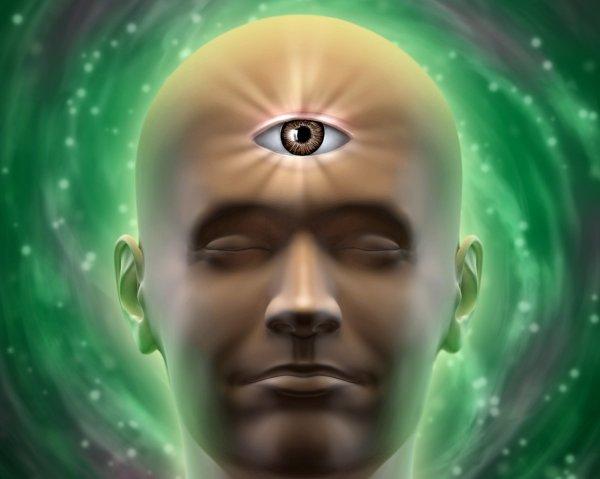 Ученые объяснили способность мозга к предвидению