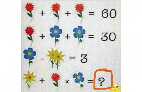 Новая «цветочная» головоломка взорвала интернет