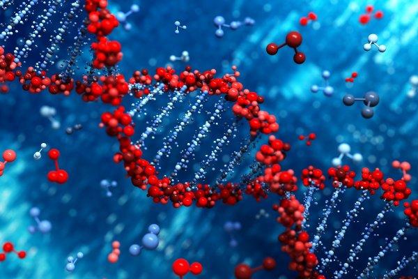 В США рассмотрят первую заявку на внесение изменений в геном человека