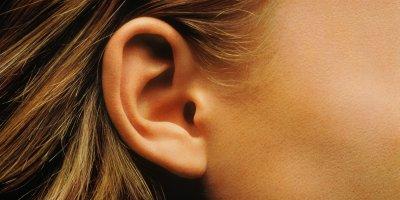Канадский ученый вырастил человеческое ухо из обычного яблока