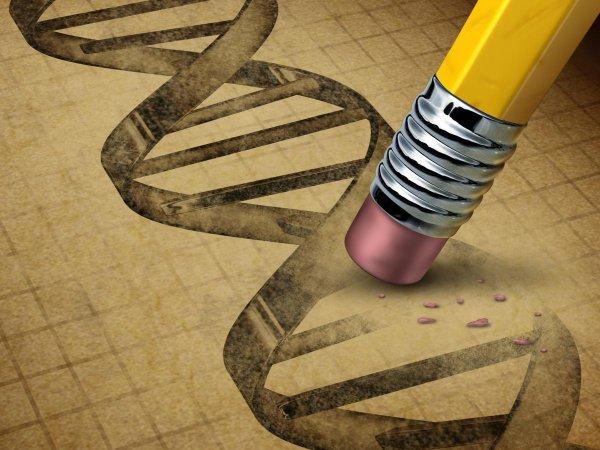 В США одобрили проведение первого эксперимента по редактированию генома человека