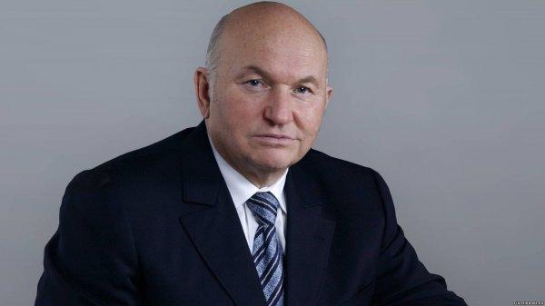 Лужков стал доверенным лицом кандидата в депутаты Комоедова