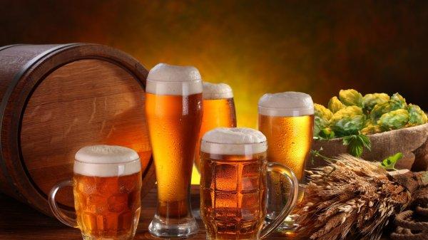 Ученые: Древние рабочие получали расчет пивом