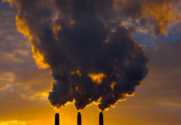 Ученые: Загрязнение воздуха приводит к заболеванию почек