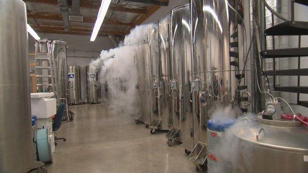 В США начато строительство центра посмертной заморозки