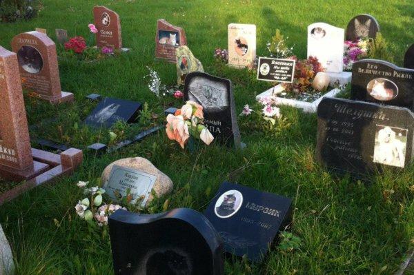 Прокуратура Урала проверит захоронения людей на животном кладбище
