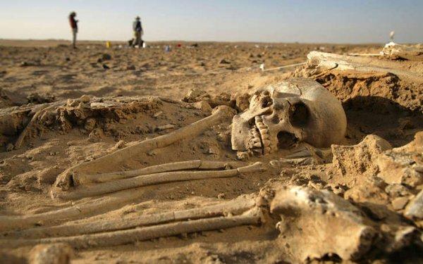 Археологи обнаружили в Иерусалиме кладбище филистимлян