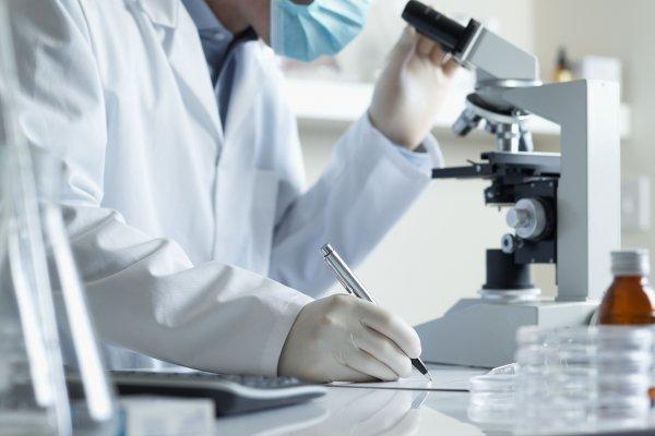 Ученые: Найденные белки способны переключать иммунные Т-клетки
