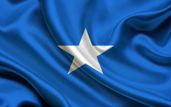 В Сомали сбили уникальный беспилотник, имитировавший птицу