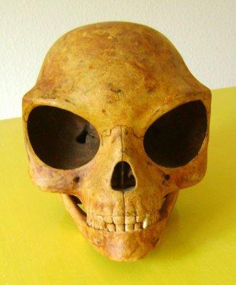 В Дании нашли череп инопланетянина
