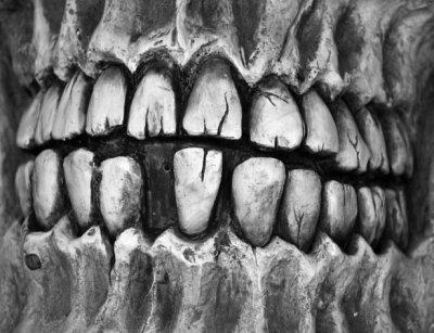 Ученые: О дефиците солнечного света расскажут зубы