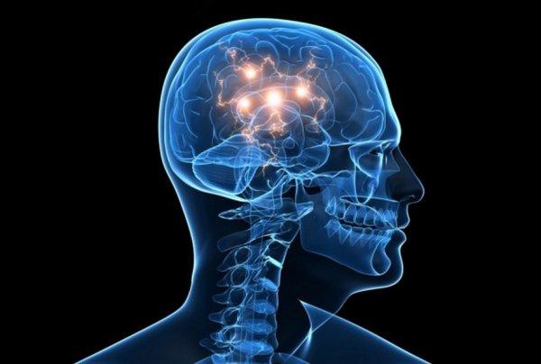 Ученые обнаружили в мозге человека сотню неизвестных областей