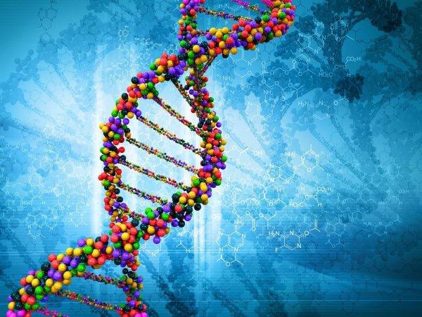 Учёные: Болезни передаются по наследству не только генами
