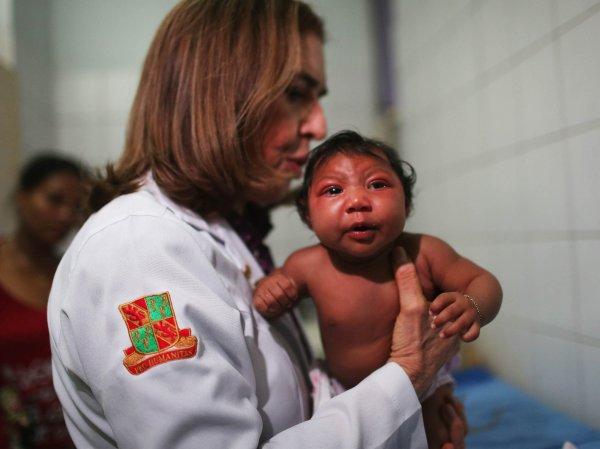 Ученые из Бразилии выявили еще один тип комаров-переносчиков вируса Зика