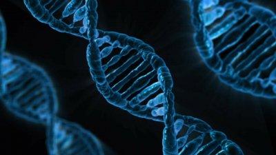NASA и SpaceX выполнят секвенирование ДНК в космосе