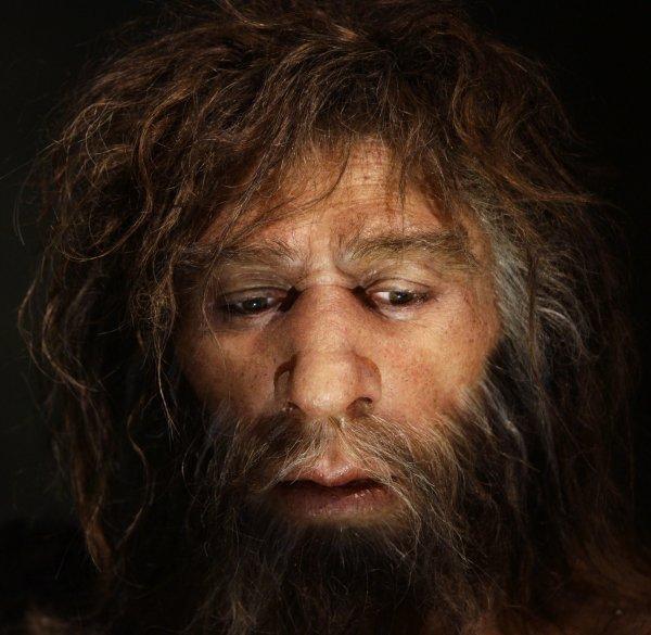 Перед вымиранием численность неандертальцев достигла пика