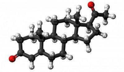 Ученые обнаружили замедляющий старение мужской гормон
