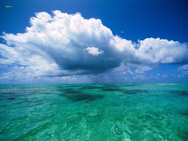 Ученые: Деятельность человека снизила влияние океана на климат планеты