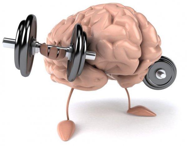 Ученые: Интеллектуальные игры помогают снижать риск развития слабоумия
