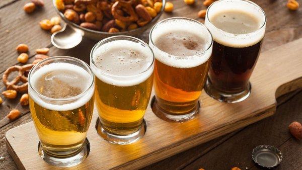 Специалисты научились делать пиво из мочи с помощью солнечного света
