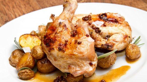 Ученые научились выращивать куриное мясо в лаборатории