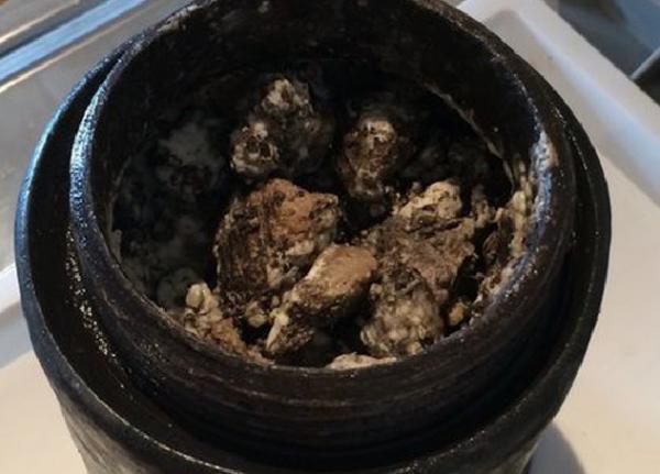 Шведские археологи подняли со дна морского океана 340-летний сыр