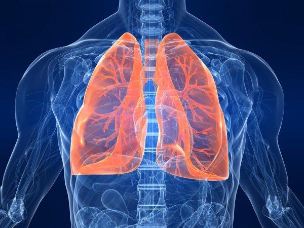 Ученые: Для лечения фиброза найден новый метод